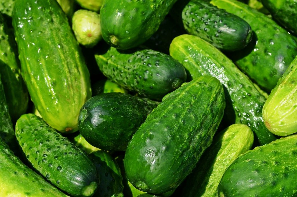 EATING CUCUMBER EVERYDAY SEE WHAT HAPPENS TO YOUR BODY